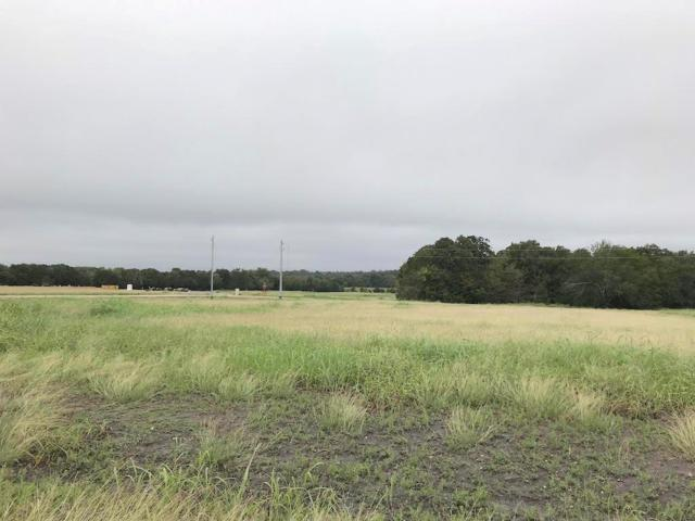 0 Crosswinds Estates, Brenham, TX 77833 (MLS #14962303) :: Krueger Real Estate