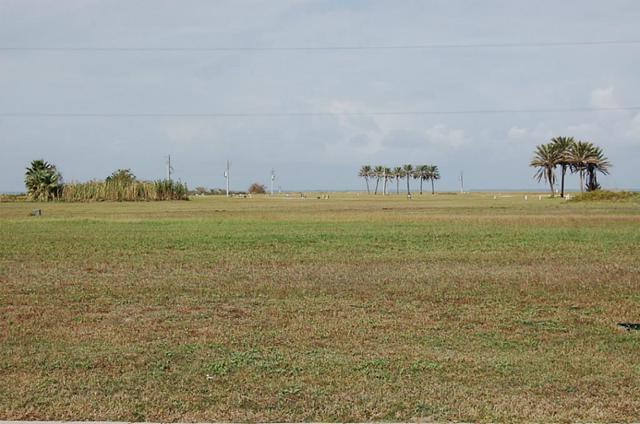 21214 Scissor Tail Lane, Galveston, TX 77554 (MLS #14973419) :: Texas Home Shop Realty