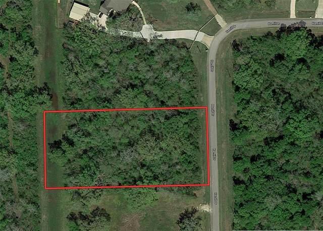 17226 Hamill Drive, Rosharon, TX 77583 (MLS #14994486) :: Ellison Real Estate Team