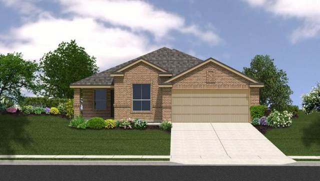 3221 Brosnan Road, Lorena, TX 76655 (#15001577) :: ORO Realty