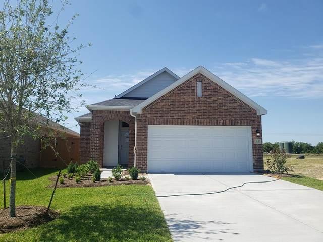 13137 Dancing Reed Drive, Texas City, TX 77510 (MLS #15050329) :: The Queen Team