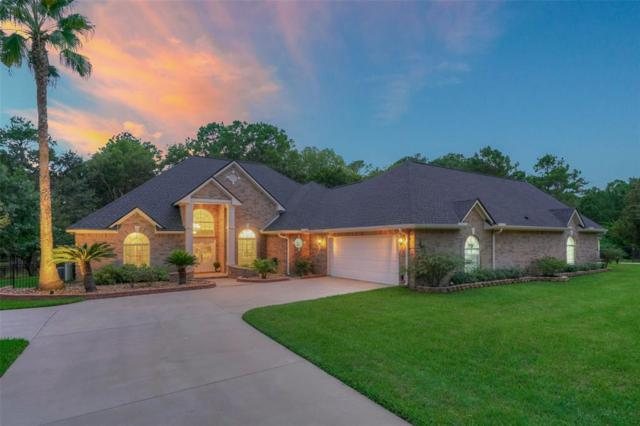 12775 Lake Villa Lane, Willis, TX 77318 (MLS #15104266) :: The Home Branch