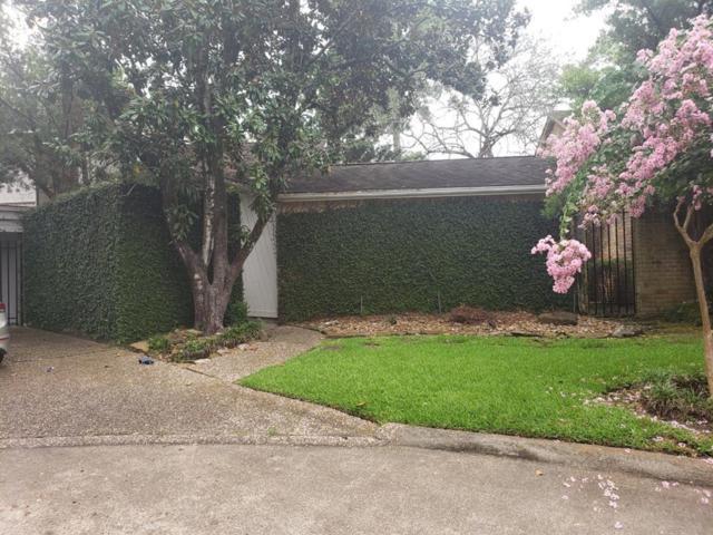 166 Old Bridge Lake, Houston, TX 77069 (MLS #15113748) :: Texas Home Shop Realty