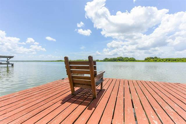 114 Lake Front Drive, Trinity, TX 75862 (MLS #15215058) :: The SOLD by George Team