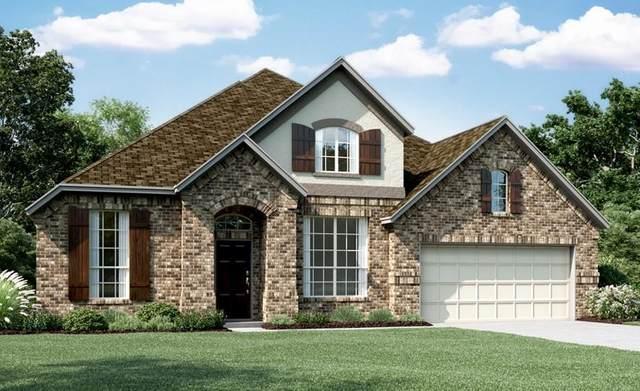 29018 Canyon Oak Drive, Katy, TX 77494 (#15231901) :: ORO Realty