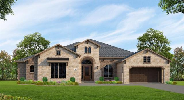 16519 Winding Ivy Lane, Cypress, TX 77433 (MLS #15288302) :: Lion Realty Group / Exceed Realty