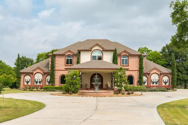8618 Thornberry Hollow Court, Missouri City, TX 77459 (MLS #15291245) :: The SOLD by George Team