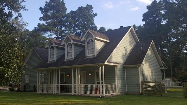 30003 Coriander, Magnolia, TX 77355 (MLS #15336224) :: Krueger Real Estate