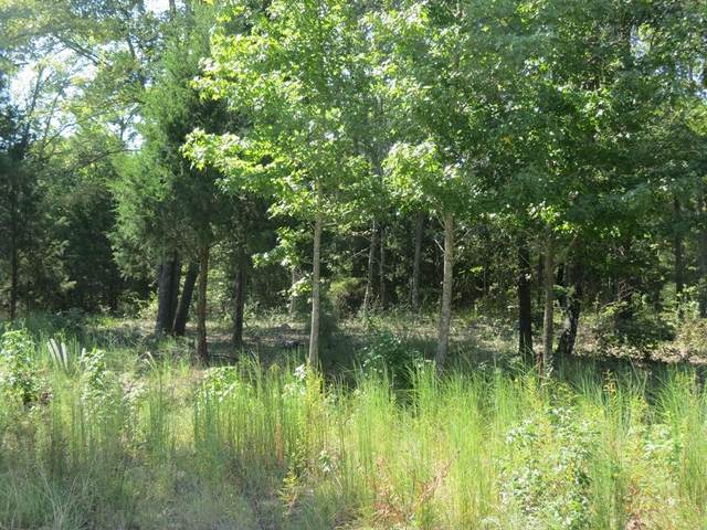 TBD Lot 5 Cr 422, Lindale, TX 75771 (MLS #15389845) :: Michele Harmon Team