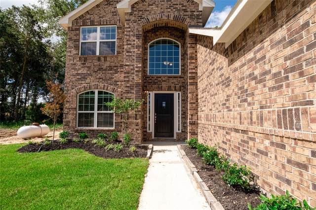 10918 Mendel Terrace Drive, Iowa Colony, TX 77583 (MLS #15444657) :: All Cities USA Realty