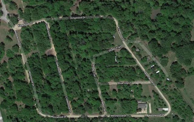 0 Kingwood Drive, Trinidad, TX 75163 (MLS #15452004) :: The Heyl Group at Keller Williams