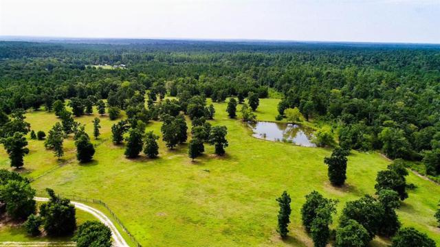 208 Pine Ridge Lane, Huntsville, TX 77340 (MLS #15468543) :: Texas Home Shop Realty