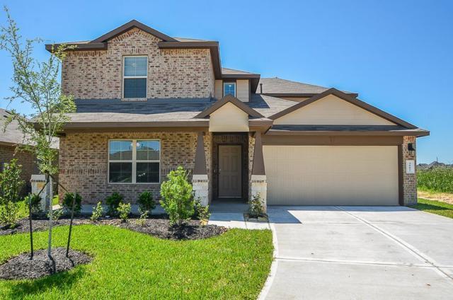 3002 Josephine Falls Court, Katy, TX 77494 (MLS #15479095) :: The Home Branch