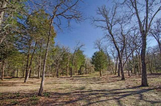 5524 Hwy 36 N, Bellville, TX 77418 (MLS #15487441) :: Caskey Realty