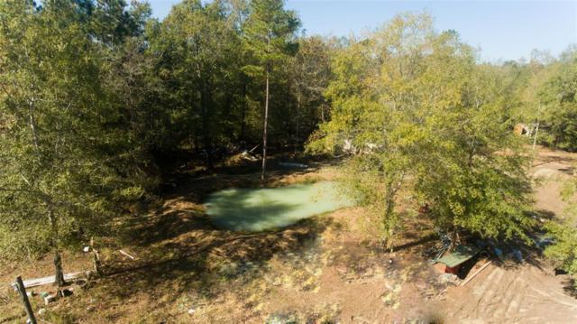877 County Road 2141, Rye, TX 77369 (MLS #15523601) :: Giorgi Real Estate Group