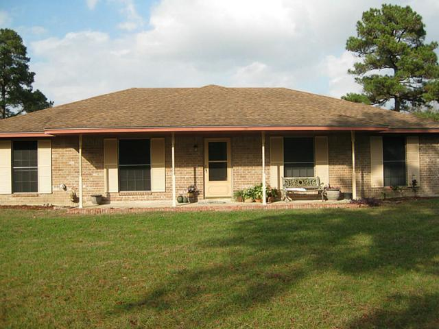 1507 Us Highway 190, Huntsville, TX 77340 (MLS #15596931) :: Mari Realty