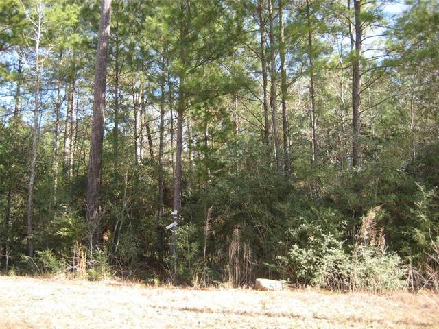 3B-15-11 Fire Sky Road, Huntsville, TX 77340 (MLS #15658422) :: Caskey Realty