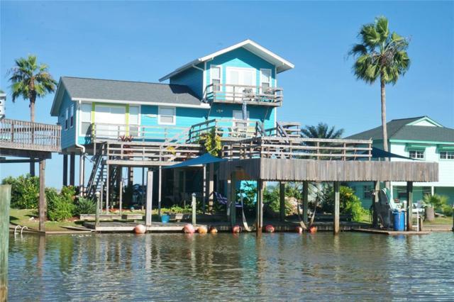 103 Marlin Lane, Freeport, TX 77541 (MLS #15669617) :: Texas Home Shop Realty