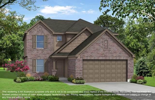 8810 Dalmatian Way, Rosharon, TX 77583 (MLS #15707341) :: The Home Branch