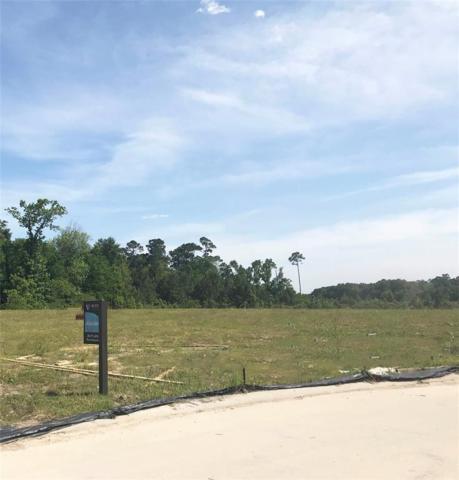 14502 Fall Creek View Drive, Humble, TX 77396 (MLS #15728696) :: Magnolia Realty
