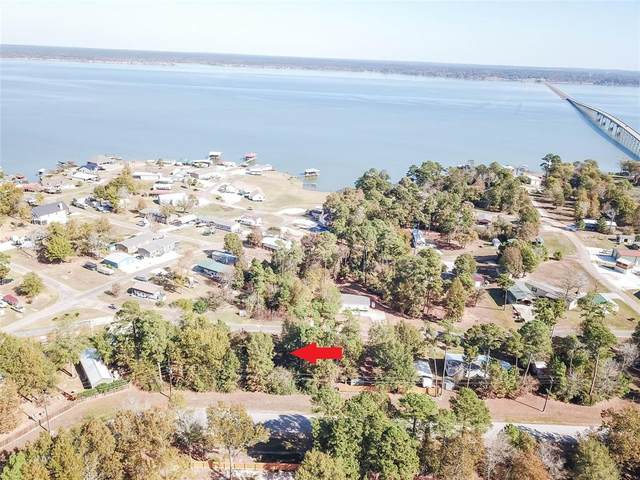 Lt 136-164 Canal Drive, Point Blank, TX 77364 (MLS #15737165) :: The Queen Team