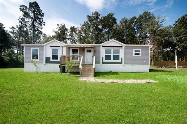 2313 Little Joe Court, Conroe, TX 77306 (MLS #15737310) :: Caskey Realty
