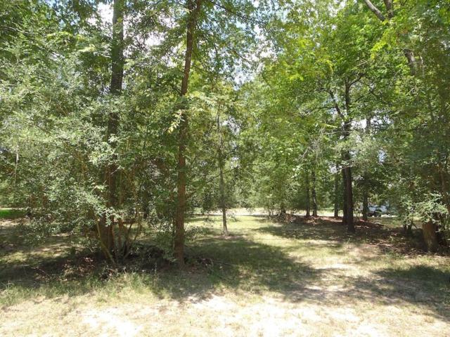 135 Wick Willow, Montgomery, TX 77356 (MLS #15767780) :: Mari Realty