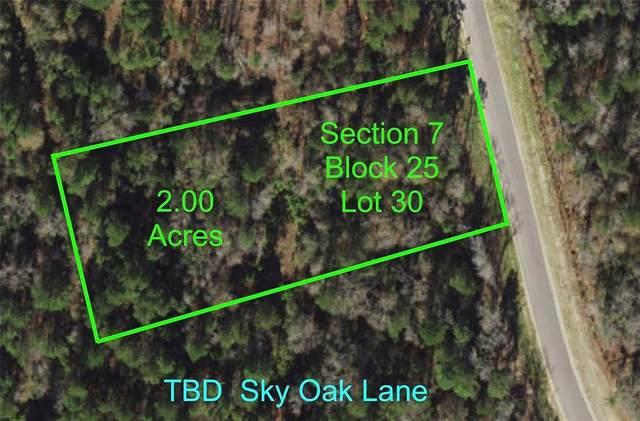 7-25-30 Sky Oak Lane, Huntsville, TX 77340 (MLS #15771622) :: Michele Harmon Team