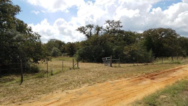 0000 Lewis Lane, Dale, TX 78616 (MLS #15780341) :: Texas Home Shop Realty