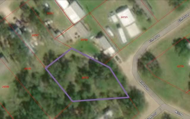 306 Elm Loop, Somerville, TX 77879 (MLS #15872252) :: My BCS Home Real Estate Group