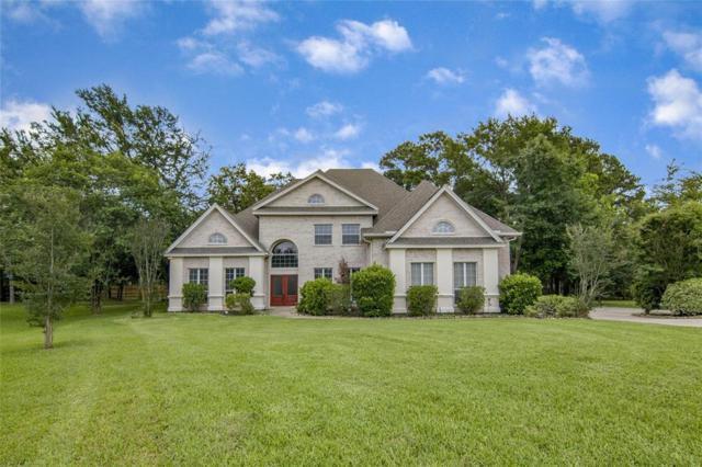 14414 Lake Vista Court, Willis, TX 77318 (MLS #15975438) :: Magnolia Realty