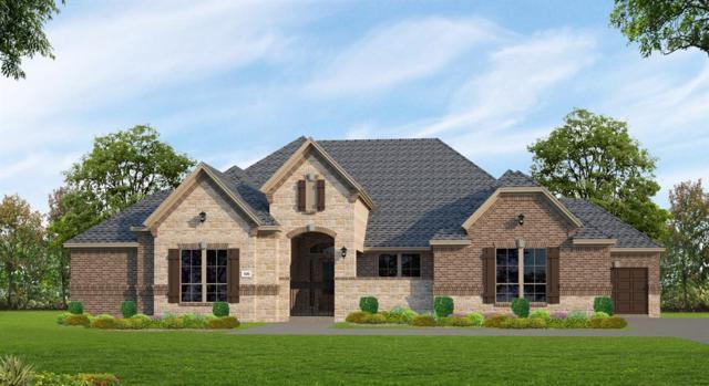 29826 Hay Field Lane, Fulshear, TX 77406 (MLS #16002126) :: The SOLD by George Team