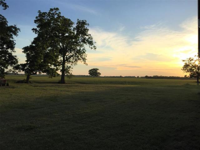 3289 County Road 158, Boling, TX 77420 (MLS #16027877) :: Magnolia Realty