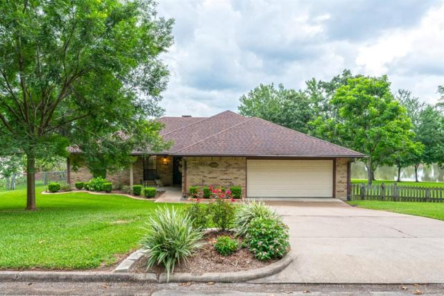262 W Lake Drive, Livingston, TX 77351 (MLS #16068982) :: Texas Home Shop Realty