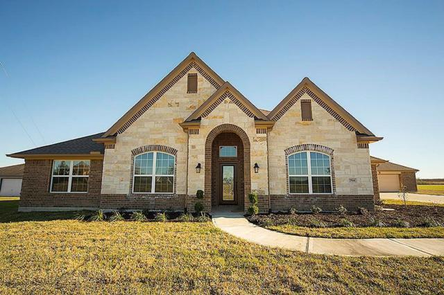 7518 Rosedown Court, Rosharon, TX 77583 (MLS #16072748) :: Texas Home Shop Realty