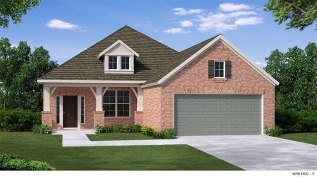 245 Trillium Park, Conroe, TX 77304 (MLS #16078254) :: Giorgi Real Estate Group
