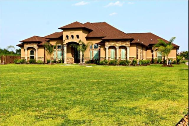 32919 Blue Crab Court, Richwood, TX 77515 (MLS #16101457) :: Texas Home Shop Realty
