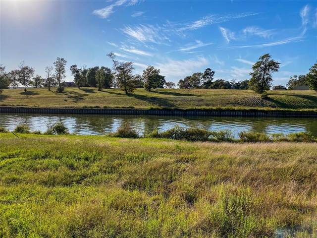 186 Waterfront Dr Drive, Livingston, TX 77351 (MLS #16169190) :: Green Residential