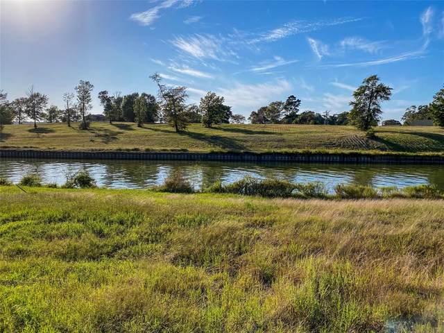 186 Waterfront Dr Drive, Livingston, TX 77351 (MLS #16169190) :: Michele Harmon Team