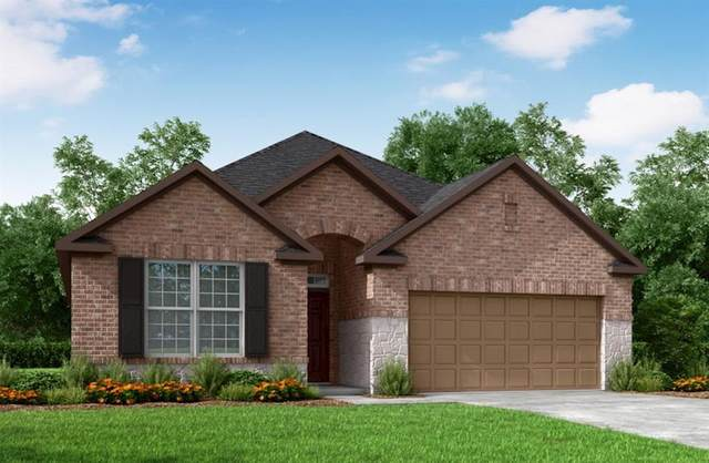 18902 Paso Fino Prairie, Tomball, TX 77377 (MLS #16182727) :: Connell Team with Better Homes and Gardens, Gary Greene