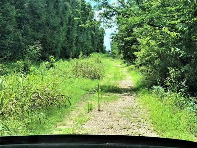 Lot 82 Buck Creek Road, Shepherd, TX 77371 (MLS #16186153) :: Michele Harmon Team