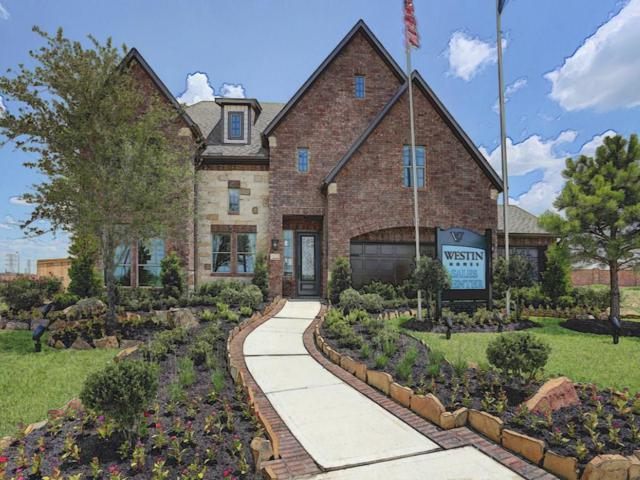 19034 Fire Tower Hill Place, Cypress, TX 77433 (MLS #16188976) :: The Sansone Group