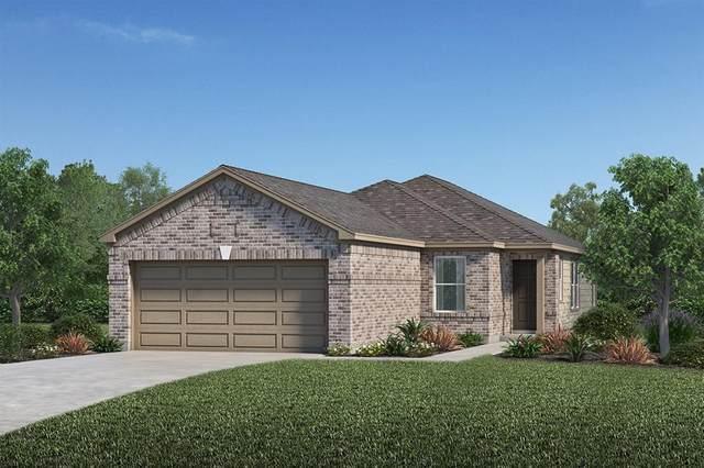 6025 Wakanda Lane, Houston, TX 77048 (MLS #16211604) :: Green Residential