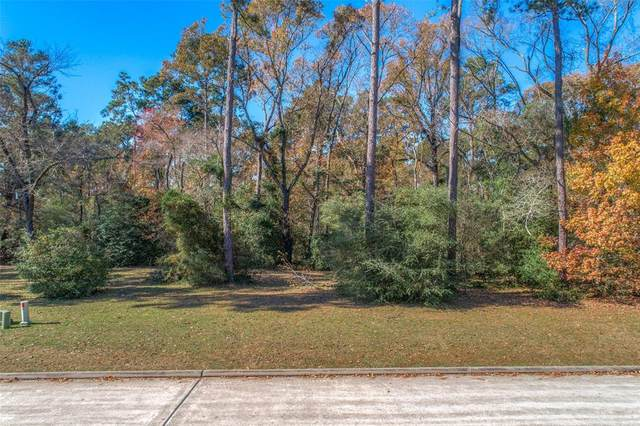 153 Pine Branch Dr, Montgomery, TX 77356 (MLS #16232216) :: Area Pro Group Real Estate, LLC