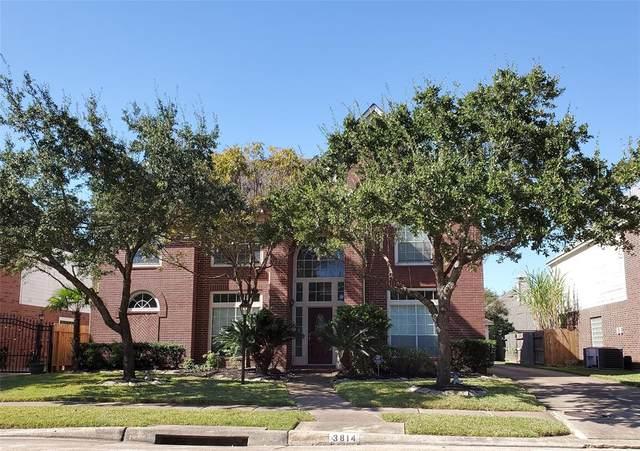 3814 Shady Harbor Drive, Houston, TX 77082 (MLS #16274906) :: TEXdot Realtors, Inc.