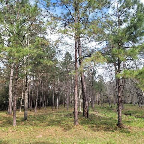 Lot 6 Fantail Street, Magnolia, TX 77355 (MLS #16317009) :: The Sansone Group