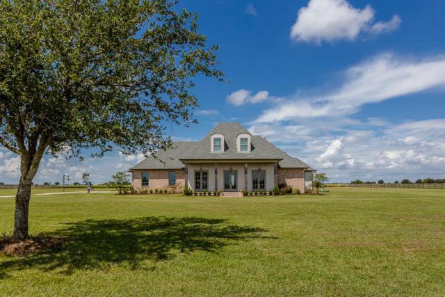 12310 Westview Circle, Needville, TX 77461 (MLS #16344447) :: Team Sansone