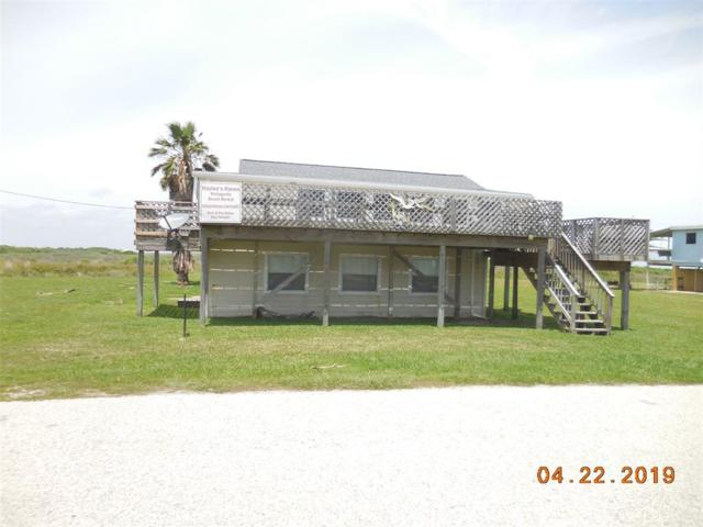 371 Beachfront Drive, Matagorda, TX 77457 (MLS #16348316) :: Texas Home Shop Realty
