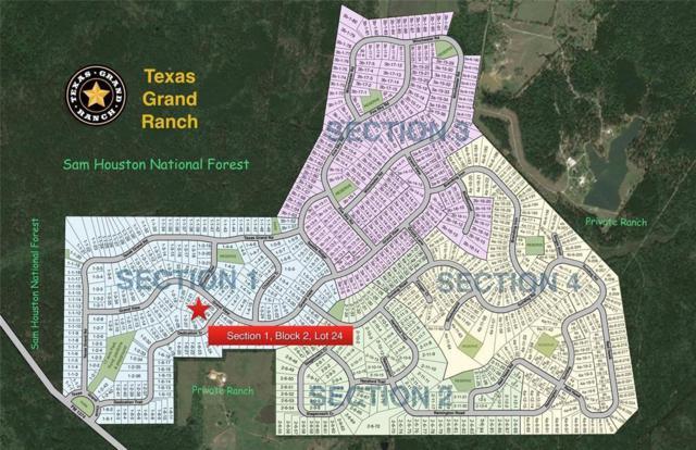 1-2-24 Dedication Trail, Huntsville, TX 77340 (MLS #16375894) :: The Jill Smith Team