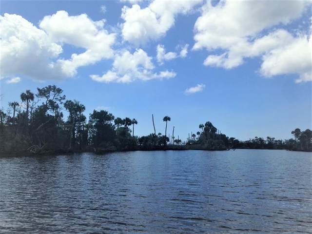 4340 River St, Other, FL 32336 (MLS #16453108) :: Christy Buck Team